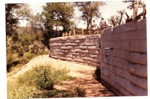 Bergendal 1984