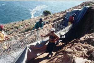 Gordons Bay 1999